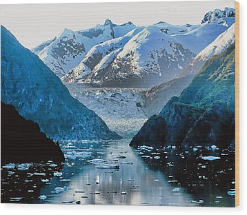 Glacier Bay Wood Print by Sergey Nassyrov