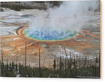 Grand Prismatic Springs In Yellowstone National Park Wood Print by Pierre Leclerc Photography