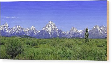 Grand Tetons Panorama Wood Print by Mary Gaines