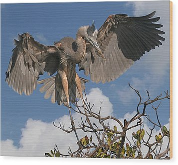 Great Blue Heron Wood Print by Larry Linton