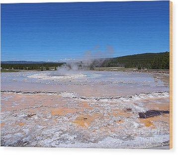 Great Fountain Geyser In Yellowstone National Park Wood Print by Louise Heusinkveld