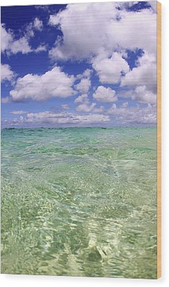 Green Water Seascape Wood Print by Vince Cavataio