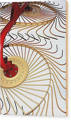 Hay Rake Wood Print by Gina  Zhidov