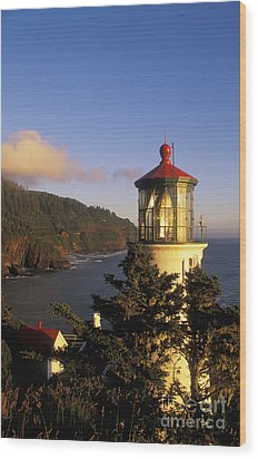 Heceta Head Lighthouse Wood Print by Greg Vaughn - Printscapes