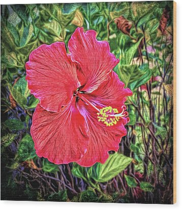 Wood Print featuring the photograph Hibiscus Flower by Lewis Mann