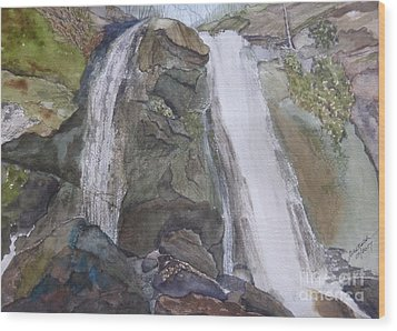 Wood Print featuring the painting High Shoals Falls by Joel Deutsch