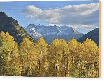Wood Print featuring the photograph Highway 145 Colorado by Ray Mathis
