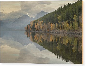 Wood Print featuring the photograph His Reflections by Al Swasey