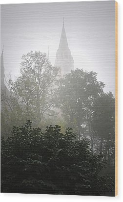 Holy Hill Wood Print