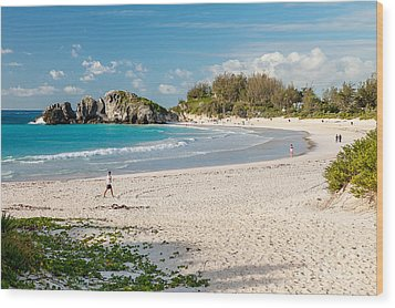 Horseshoe Bay In Bermuda Wood Print