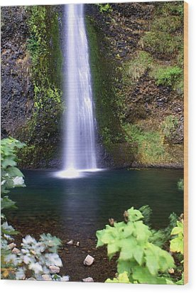 Horsetail Falls Wood Print by Marty Koch