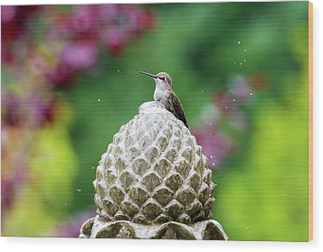 Hummingbird On Garden Water Fountain Wood Print by David Gn
