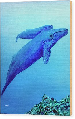 Humpback Mother Whale And Calf #21 Wood Print by Donald k Hall