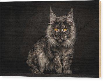 Hunting Mode Wood Print by Robert Sijka