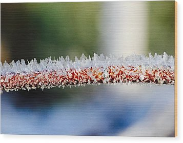 Ice Crystals Wood Print by Tiffany Erdman