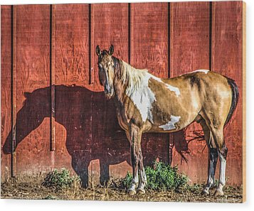 #0783 - Buckskin On Red Wood Print