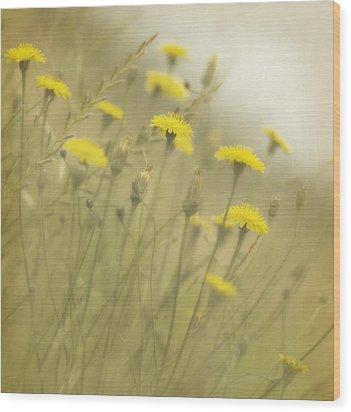 In The Mist Wood Print by Rebecca Cozart