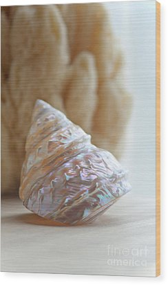 Wood Print featuring the photograph Iridescent by Aiolos Greek Collections