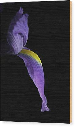 Iris Wood Print by Elsa Marie Santoro