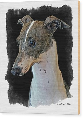 Italian Greyhound Wood Print by Larry Linton
