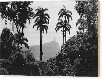 Jardim Botanico - Rio De Janeiro Wood Print by Eduardo Costa