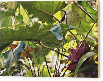 Wood Print featuring the photograph Jungle Jive by Mindy Newman