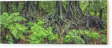 Wood Print featuring the photograph Jungle Roots by Les Cunliffe