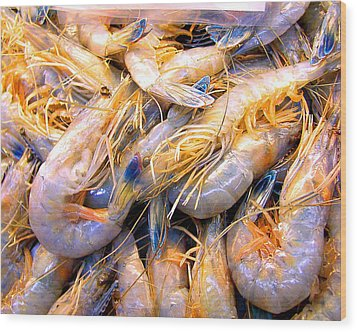 Wood Print featuring the photograph Just Caught Shrimp by Merton Allen