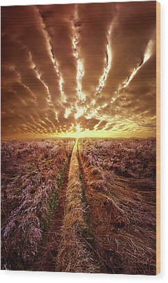 Wood Print featuring the photograph Just Over The Horizon by Phil Koch