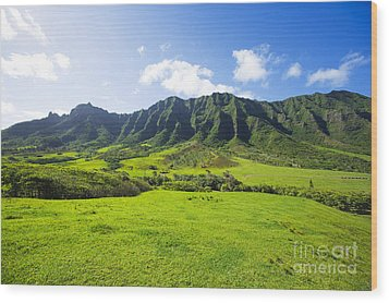 Kaaawa Valley And Kualoa Ranch Wood Print by Dana Edmunds - Printscapes