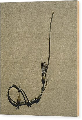 Kelp 1 Wood Print by Art Shimamura