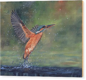 Wood Print featuring the painting Kingfisher by David Stribbling