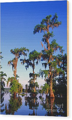 Lake Martin Cypress Swamp Wood Print by Thomas R Fletcher