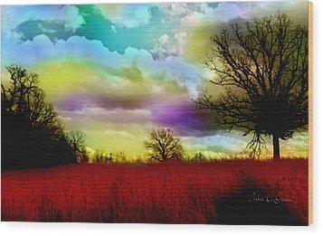 Landscape In Red Wood Print by Julie Grace