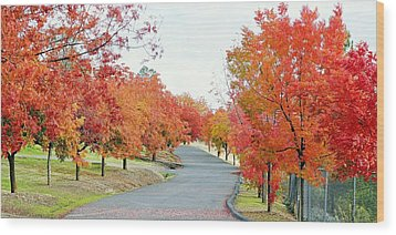 Wood Print featuring the photograph Last Days Of Autumn by AJ Schibig