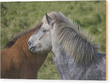Wood Print featuring the photograph Lean On Me by Elvira Butler