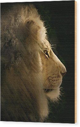 Lion Of Judah II Wood Print by Sharon Foster