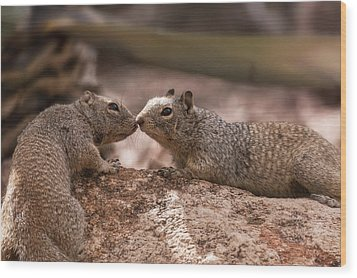 Wood Print featuring the photograph Love Is In The Air  by Saija Lehtonen