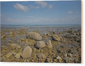Wood Print featuring the photograph Low Tide by Nicola Fiscarelli