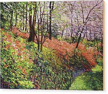 Magic Flower Forest Wood Print by David Lloyd Glover