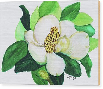 Magnolia Iv Wood Print by Joan Zepf