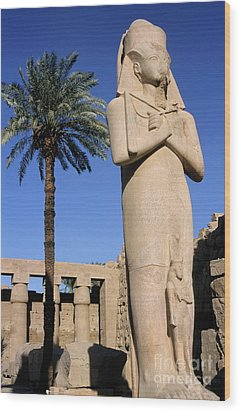Majestic Statue Of Ramses II At Karnak Temple Wood Print by Sami Sarkis