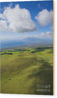 Maui Aerial Wood Print by Ron Dahlquist - Printscapes