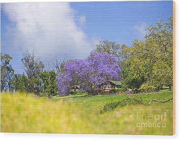 Maui Upcountry Wood Print by Ron Dahlquist - Printscapes