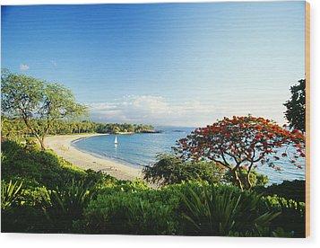 Mauna Kea Beach Wood Print by Peter French - Printscapes