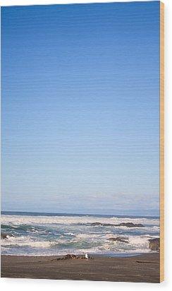 Mendocino California Coastline Wood Print by Tammie Gilchrist