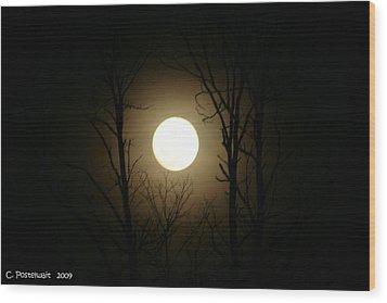 Mingo Moon Wood Print
