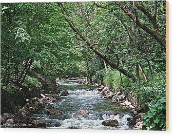 Minnehaha Creek Wood Print