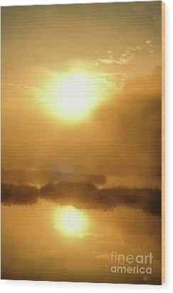 Wood Print featuring the photograph Misty Gold by Tatsuya Atarashi