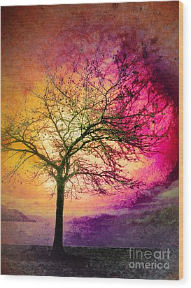 Morning Fire Wood Print by Tara Turner